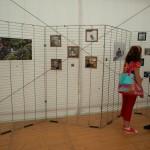 expo photo avec des lego